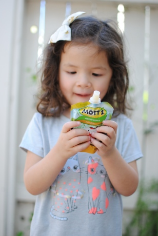 motts applesauce pouch review