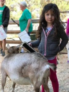 Beacon Hill Park Victoria British Columbia free public park kids